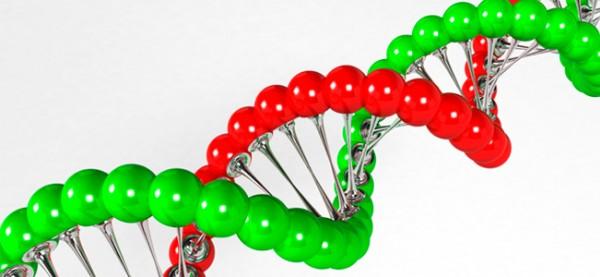 Biotech: kansrijk voor beleggers