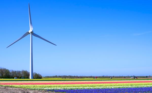 Duurzame energie kans beleggers