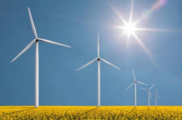 Donald Trump duurzame energie