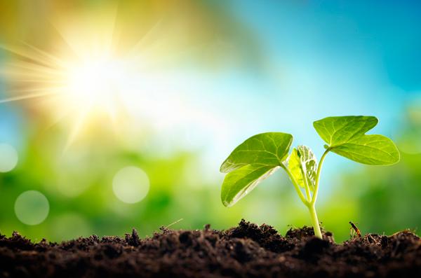 groen investeren voor beleggers